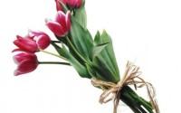 Pozvánka na Deň matiek 12. 5. 2013