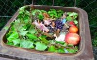 Pozvánka na školenie kompostmajstrov