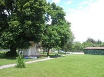 Prvé stretnutia starostu s občanmi v parku