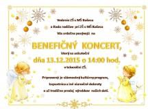 Benefičný koncert 2015