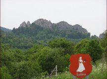 Obchodná verejná súťaž obec Lednica