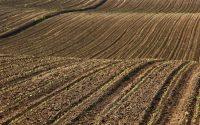 Oznam pre užívateľov poľnohospodárskej pôdy